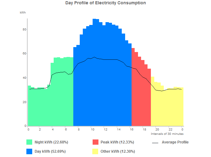 Day profile of electricity consumption