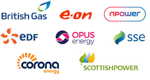 British Gas, E-On, Npower, EDF, Opus Energy, SSE, Corona Energy, scottish power